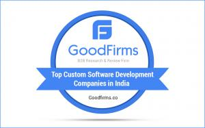 Top Custom Software Development Companies In India
