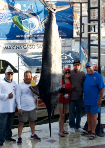 Cabo fishing tournaments, Cabo fishing reports, Cabo sportfishing