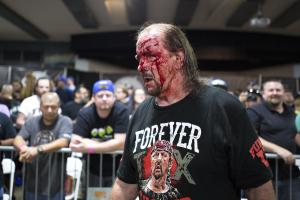 Terry Funk crimson mask