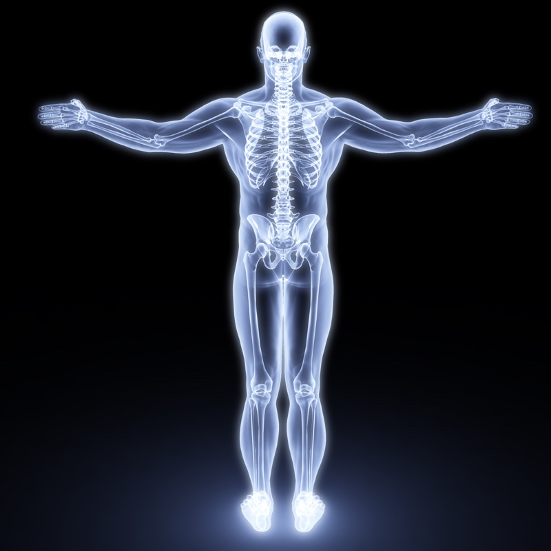 Laser therapy activates cellular response throughout bodily tissues.