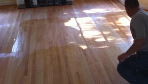 Water Popping Hard Wood Floors