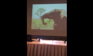 Still image taken from video of LiFi demonstration at the TRC in Jordan.