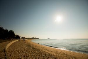 Surf-Club-Beach-Madison