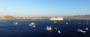 Cabo fishing tournaments