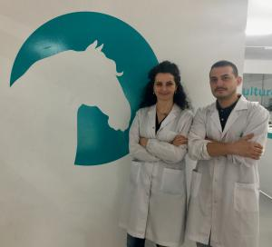 New Equine Virus (NEV) was first identified in 2013 by Isabel Fidalgo Carvalho and Alexandre Pires. Isabel and Alexandre went on to found Portugal-based equine biotech firm Equigerminal in order to develop an accurate and commercially viable NEV diagnostic test.
