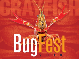 Each year over 35,000 visitors come to BugFest to experience over 100 exhibits, crafts, games and activities. The venue provides the opportunity for attendees to interact with entomologists, scientists and learn about the fascinating world of bugs.
