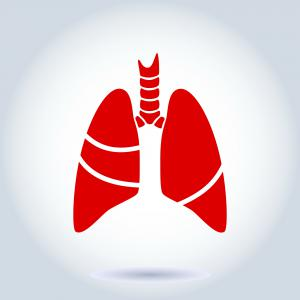 Asthma Affects the Airways and Lungs